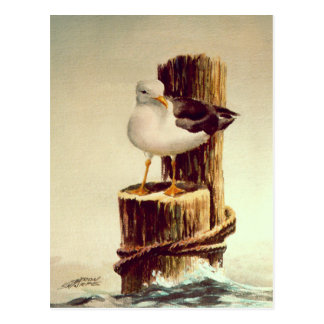 OLD MAN SEAGULL by SHARON SHARPE Postcard