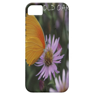 Old Oak iPhone 5 Cases