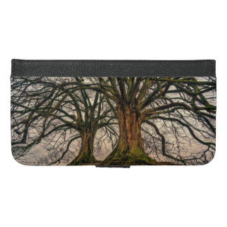 Old Oak Tree in Winter iPhone 6/6s Plus Wallet Case