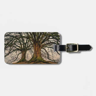 Old Oak Tree in Winter Luggage Tag