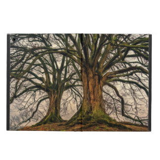 Old Oak Tree in Winter Powis iPad Air 2 Case