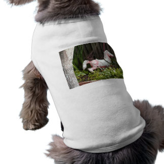 Old Paint Dog T Shirt