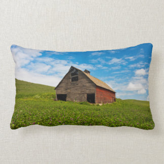 Old, red barn in field of chickpeas lumbar pillow