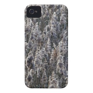 Old reed grass Case-Mate iPhone 4 case