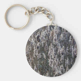 Old reed grass on a winter day. basic round button keychain