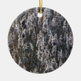Old reed grass on a winter day. ceramic ornament