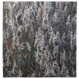 Old reed grass on a winter day. napkin