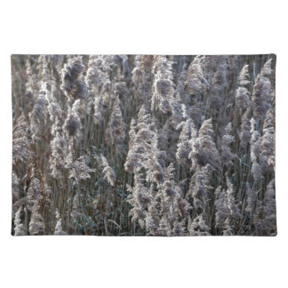 Old reed grass on a winter day. placemat