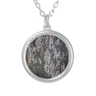 Old reed grass on a winter day. silver plated necklace