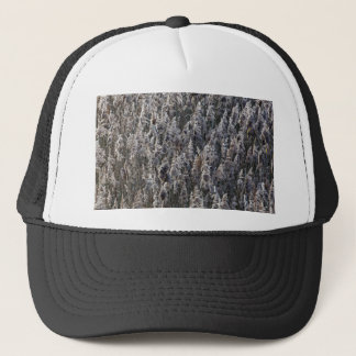 Old reed grass trucker hat