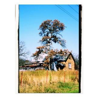 Old School House Postcard