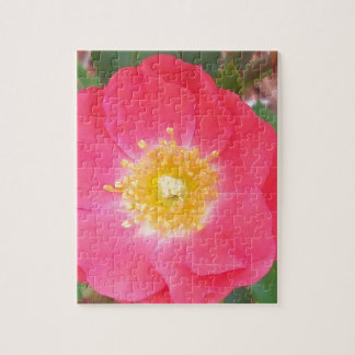 Old School Salmon colored rose Jigsaw Puzzle