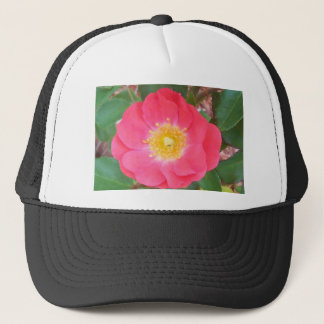Old School Salmon colored rose Trucker Hat