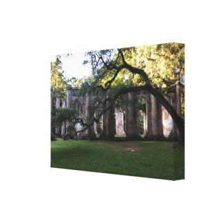 Old Sheldon Church Ruins Photo Stretched Canvas