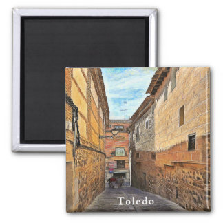 Old street in Toledo Magnet