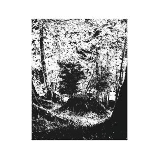 Old Stump (b&w) Canvas Print