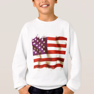 Old the USA flag Sweatshirt