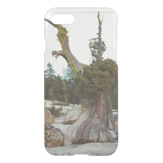 Old Tree iPhone 8/7 Case