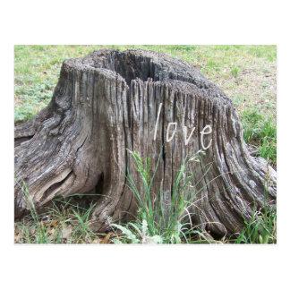 old tree stump with love postcard