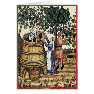 Old Vineyard Pick Grapes Card