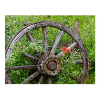 Old wagon wheel in historic old gold town 3 postcard