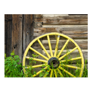 Old wagon wheel in historic old gold town postcard