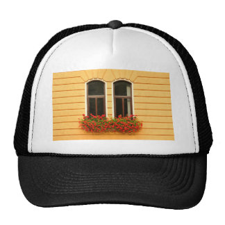 Old window trucker hat