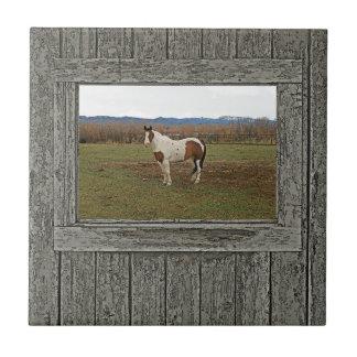 Old wood window paint horse tile