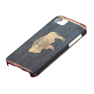 Old Wooden Wyoming Flag iPhone 5 Covers