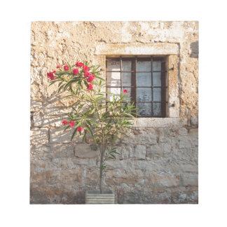 Oleander in Flower-pot, Croatia Notepad