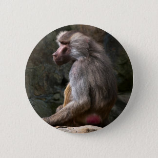 Olive Baboon 2 Inch Round Button