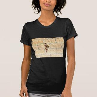 OLIVE BACK SUNBIRD QUEENSLAND AUSTRALIA T-Shirt