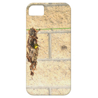 OLIVE BACKED BIRD QUEENSLAND AUSRALIA iPhone 5 CASE
