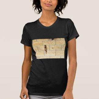 OLIVE BACKED BIRD QUEENSLAND AUSRALIA T-Shirt