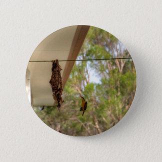 OLIVE BACKED BIRD QUEENSLAND AUSTRALIA 2 INCH ROUND BUTTON