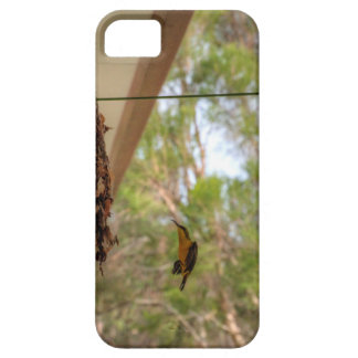 OLIVE BACKED BIRD QUEENSLAND AUSTRALIA iPhone 5 CASE