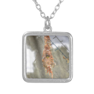 OLIVE BACKED SUNBIRD AUSTRALIA ART EFFECTS SILVER PLATED NECKLACE