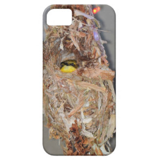 OLIVE BACKED SUNBIRD IN NEST AUSTRALIA iPhone 5 CASES