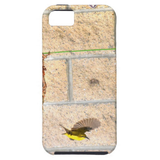 OLIVE BACKED SUNBIRD QUEENSLAND AUSTRALIA iPhone 5 COVER