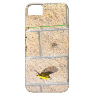 OLIVE BACKED SUNBIRD QUEENSLAND AUSTRALIA iPhone 5 COVERS