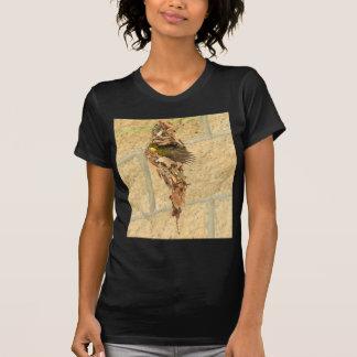 OLIVE BACKED SUNBIRD QUEENSLAND AUSTRALIA T-Shirt