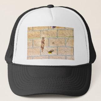 OLIVE BACKED SUNBIRD QUEENSLAND AUSTRALIA TRUCKER HAT