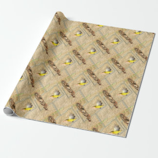 OLIVE BACKED SUNBIRD QUEENSLAND AUSTRALIA WRAPPING PAPER
