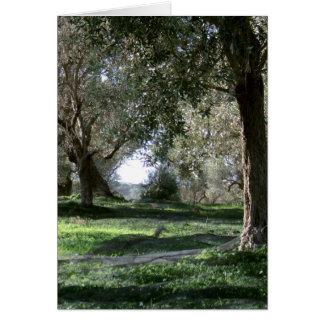 Olive Grove Card