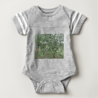 Olive tree branches with first buds Tuscany, Italy Baby Bodysuit