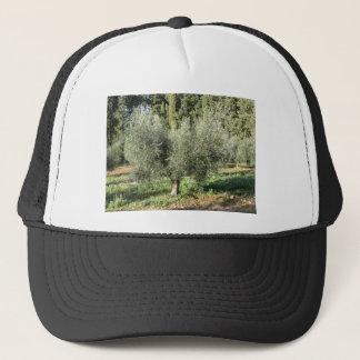 Olive trees in a sunny day. Tuscany, Italy Trucker Hat