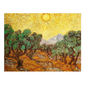 Olive Trees Yellow Sky & Sun Van Gogh Fine Art Postcard