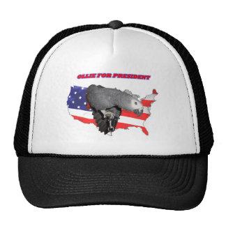 Ollie For President Trucker Hat