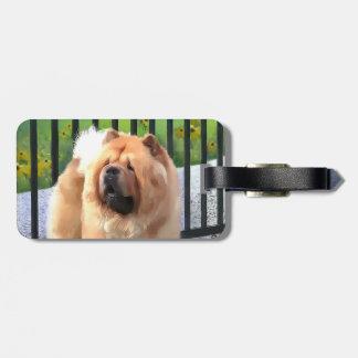 OLLIE heartdog luggage tag