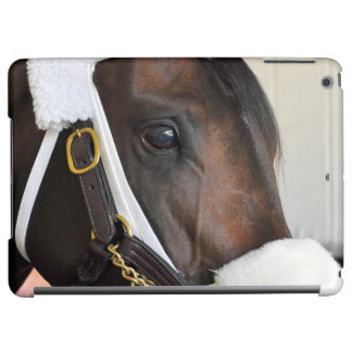 Ollysilverexpress Case For iPad Air